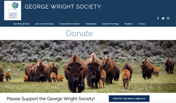 New GWS donate page graphic